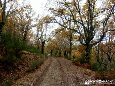 Molino Río Jarama-La Hiruela; camino norte de santiago pradena de atienza mercadillos navideños ma
